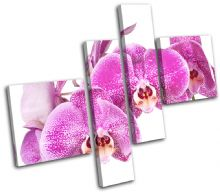 Orchid Flowers Floral - 13-1565(00B)-MP02-LO